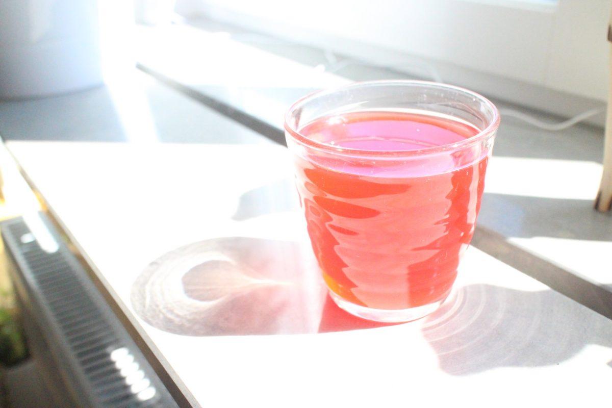 Bubblig fermenterad jordgubbs- och rabarbersoda